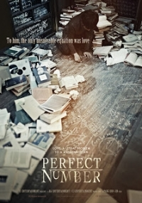 Perfect Number (2012)